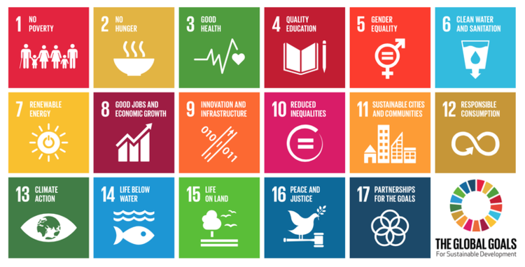Sustainable Development Goal #4: Access to quality education for all